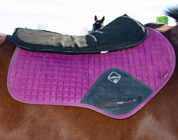 a wetherbeeta black half pad on a horse with a Le Mieux pad