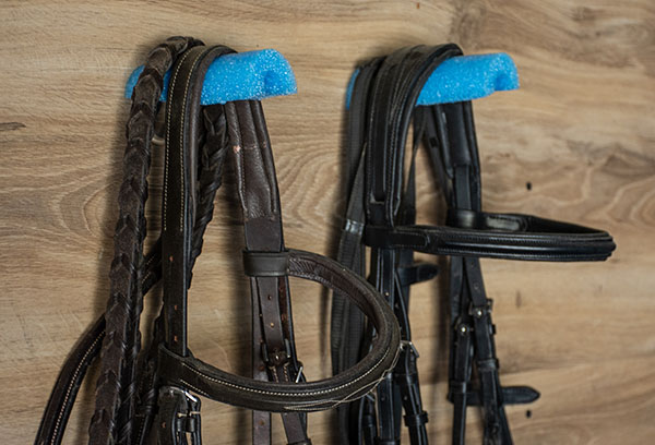 bridles sitting on pool noodles