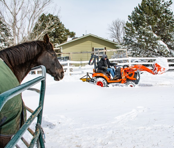 A horse and a man on a tractor moving snow