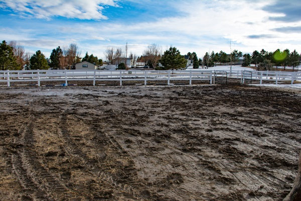 a very muddy horse pasture in the springtime in Colorado