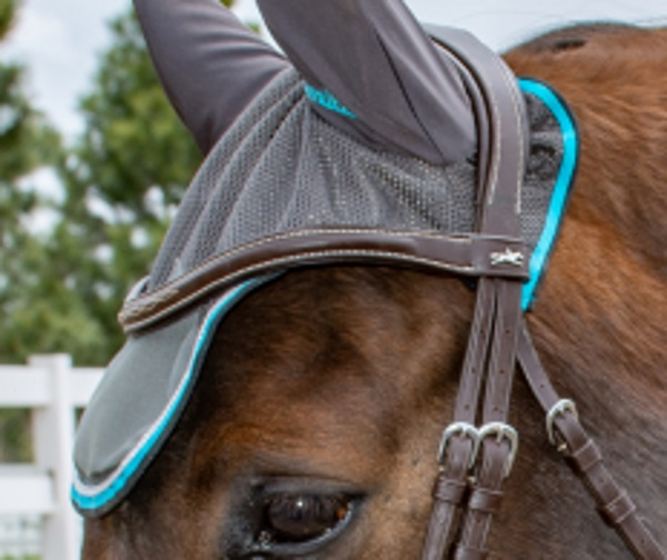 how to wear an ear bonnet