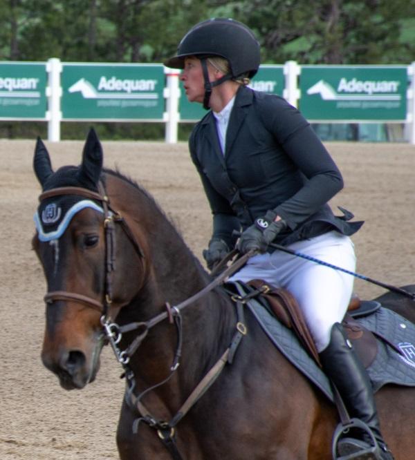 a jumper horse wearing an ear bonnet