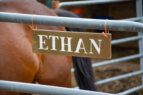 handmade stall sign for a horse