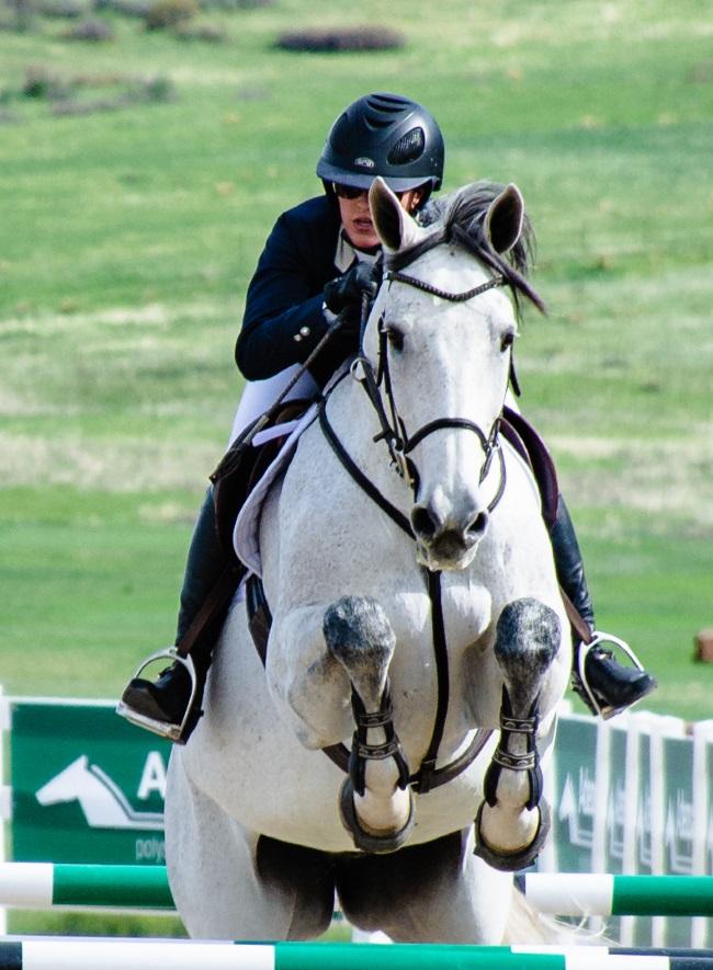 gray horse jumping a jump
