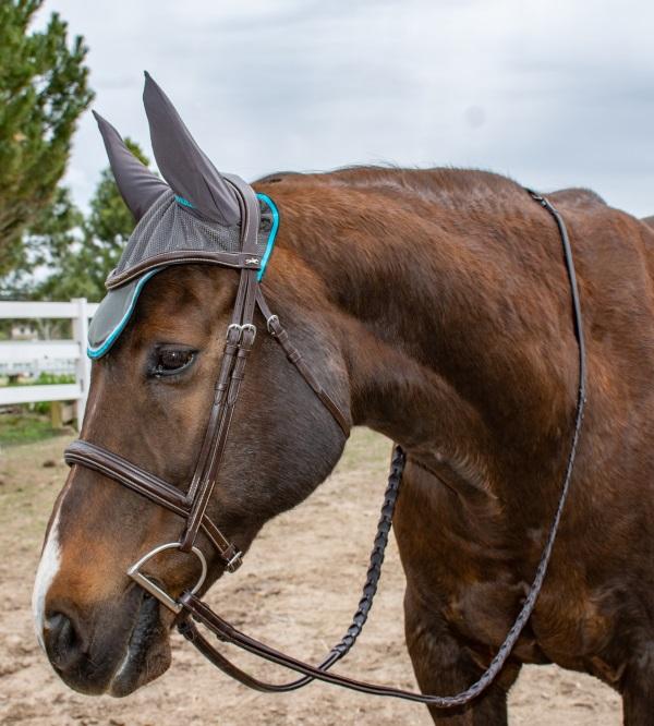 Kavalkade ear bonnet