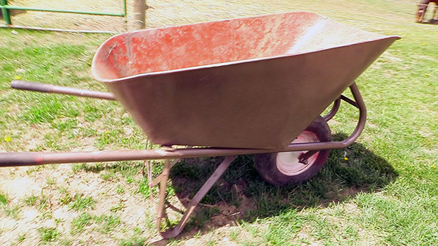 wheelbarrow in a field