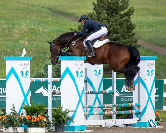 a horse jumping a big jump at a horse show
