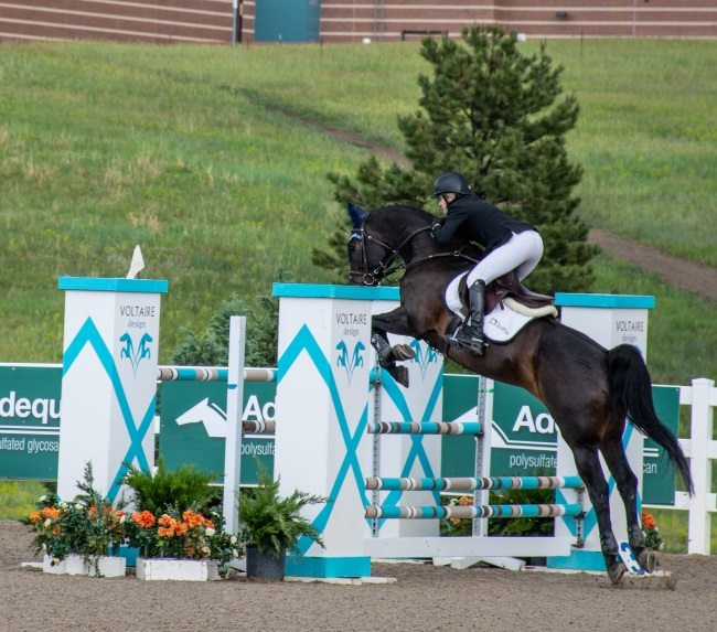 jumper rider going over a voltaire-design horse jump