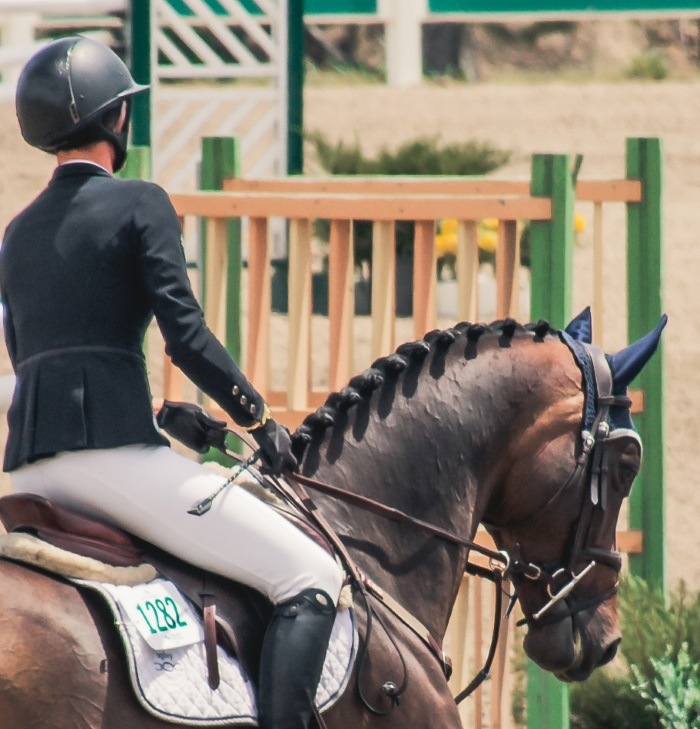 a horse and rider in an English horse show