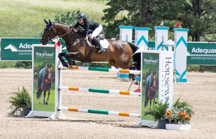 No Spectating at Horse Shows this Year