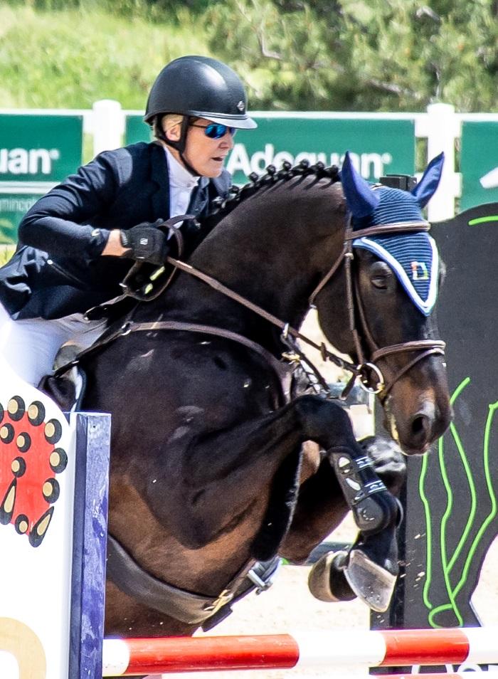 Horse jumping in a grand prix