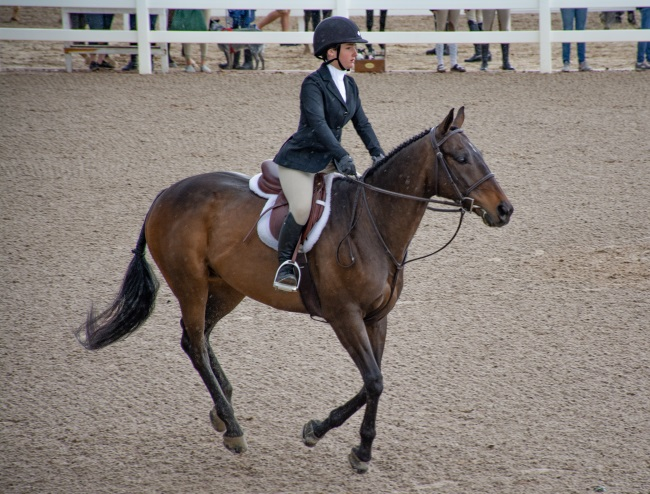 hunter rider at a horse show