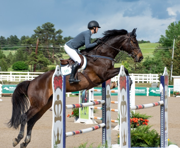 a horse taking off at a big jump