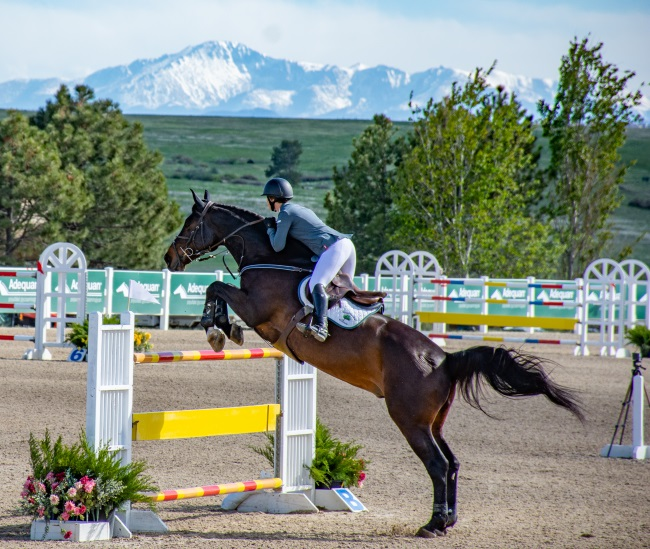Colorado Horse Park Horse Shows Are Coming!