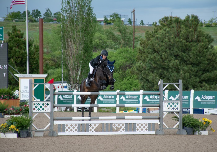 a pretty gray and white jump at the colorado horse park