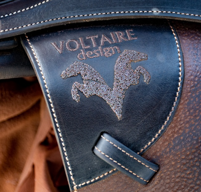 Voltaire design logo in swarovski   crystals