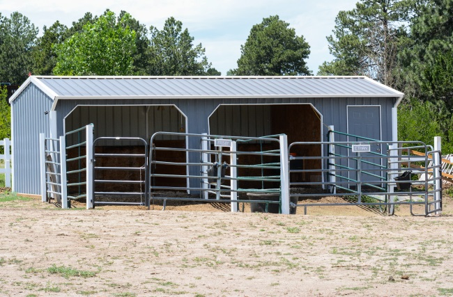 How To Diy Horse Paddocks On A Budget Budget Equestrian