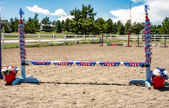 Patriotic Dollar Store Horse Jump Decorations