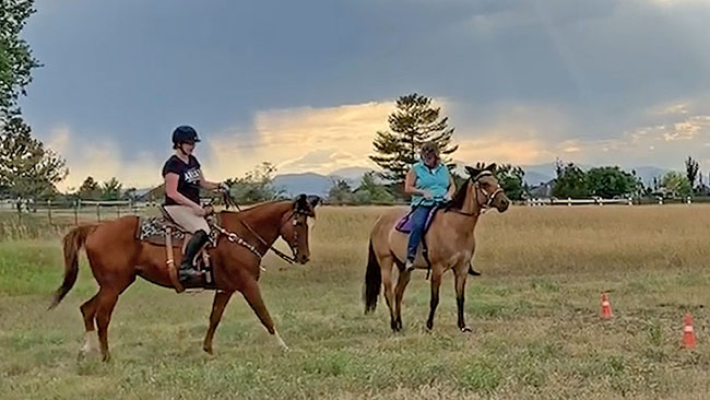 Challenge Day 16 - Riding With Friends