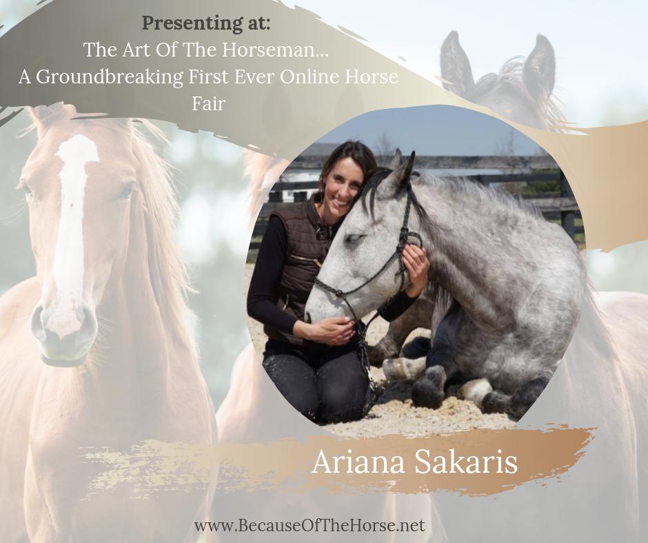 art of the horseman online fair
