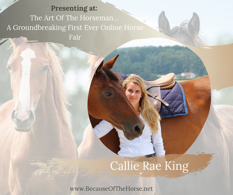 get your free ticket to the art of the horseman fair