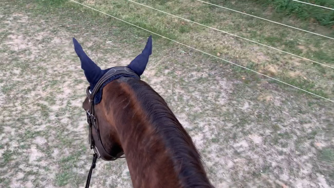 real riding challenge day 6