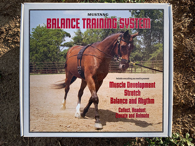 Real Riding Challenge - Lunging With Tools