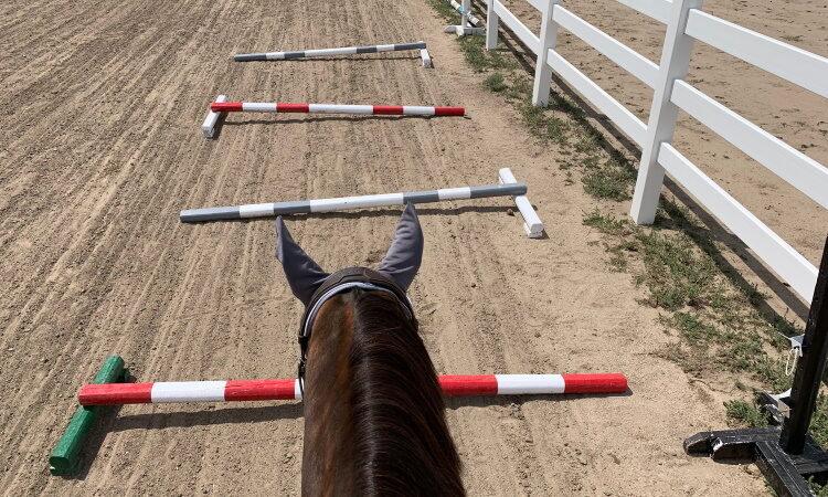 Challenge Day 18 More Ground Pole Work