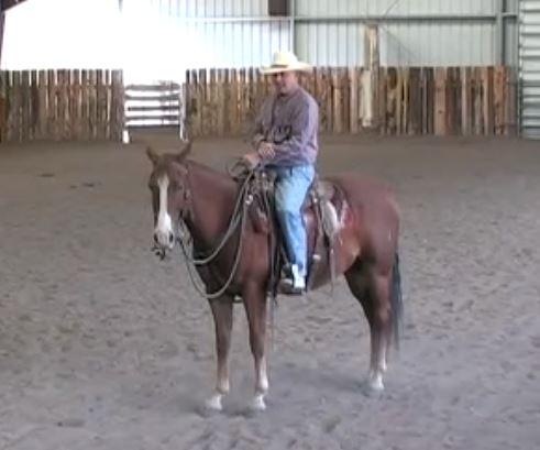 The Art of the Horseman Fair  Is Here!