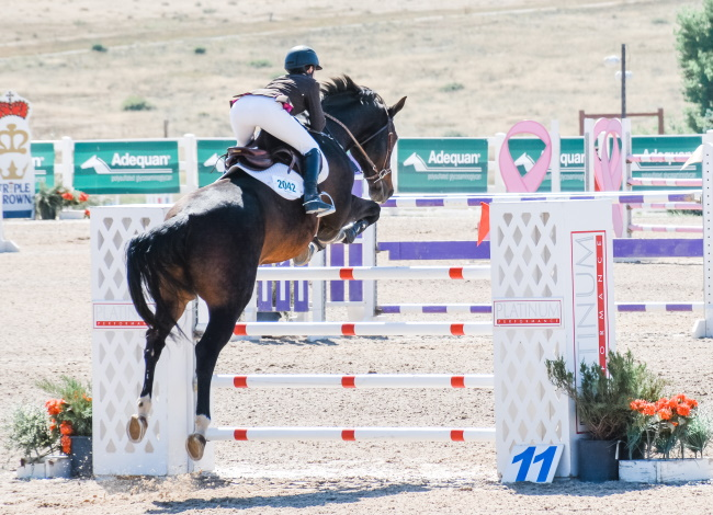 Grand Prix at the Colorado Horse Park