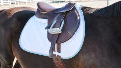 Arena Saddles Close Contact Saddle Review