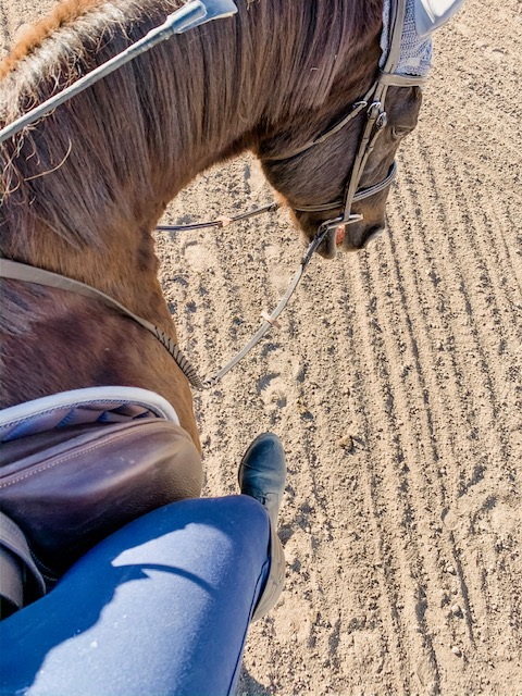 The Benefits of Riding Without Stirrups