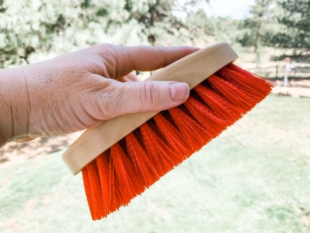 The Best of the Best Horse Brushes for less than $20.00