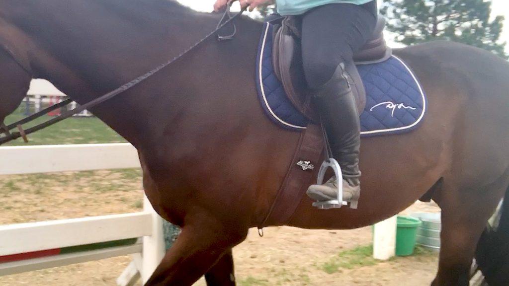 Dyon saddle pad
