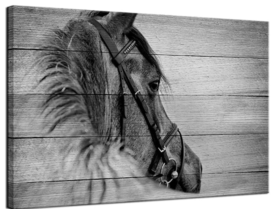 Horse Print at Amazon