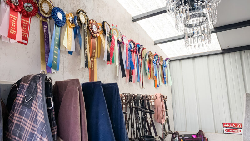 Extreme Makeover - Tack Room Edition