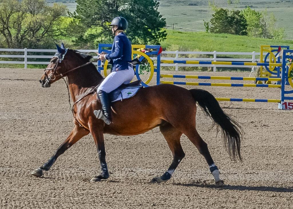 Grand Prix rider at a horse show