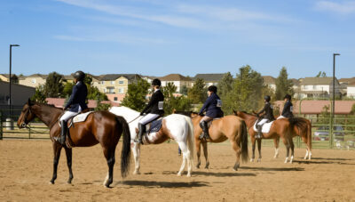 Going To Your First Horse Show – Your Tack