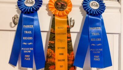 Going To Your First Horse Show – What To Bring