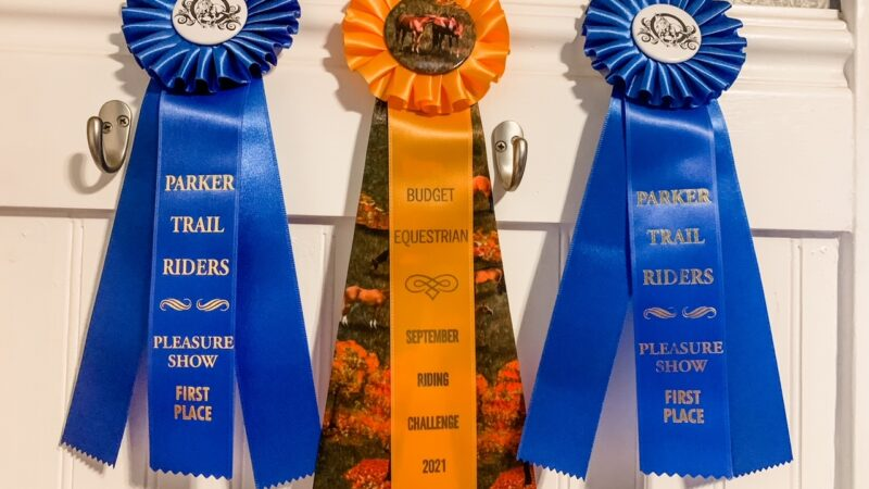 Going To Your First Horse Show - What To Bring