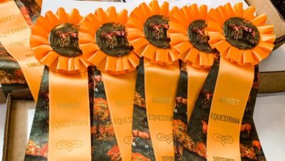 I Bought Some Horse Show Ribbons